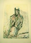 Equine Print 3